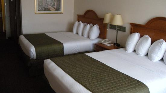 BEST WESTERN J. C. Inn: Double Queens Room
