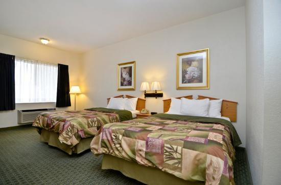 BEST WESTERN Ottawa Inn: Guest Room