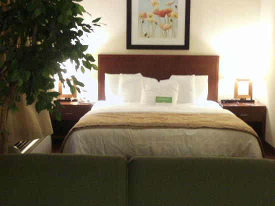 La Quinta Inn & Suites Somerset: Comfortable King size bed in Executive Suite - Room 229