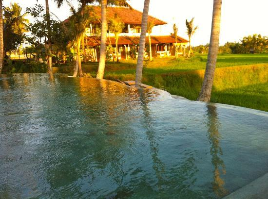 Kenanga Boutique Hotel: the pool and behind the building where the deluxe rooms are