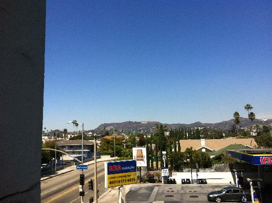 Hollywood Historic Hotel: The view