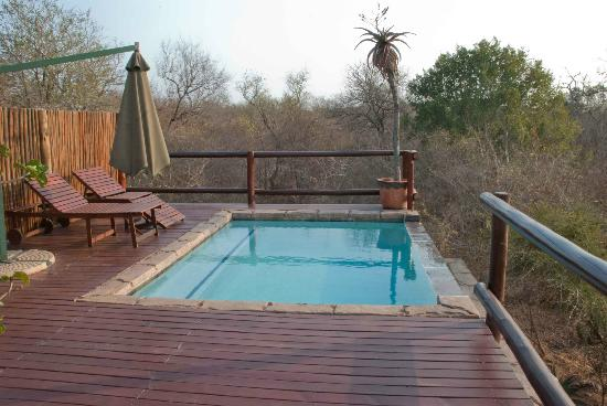 Bushwise Safaris: At the pool