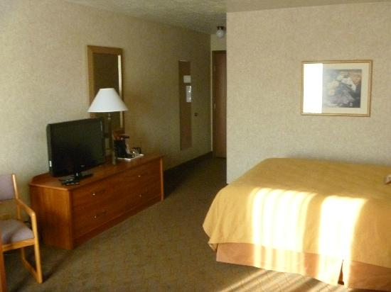 Quality Inn Homestead Park: room
