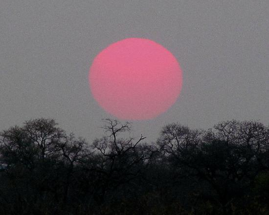 Kambaku Safari Lodge: Sunrise at Kambaku