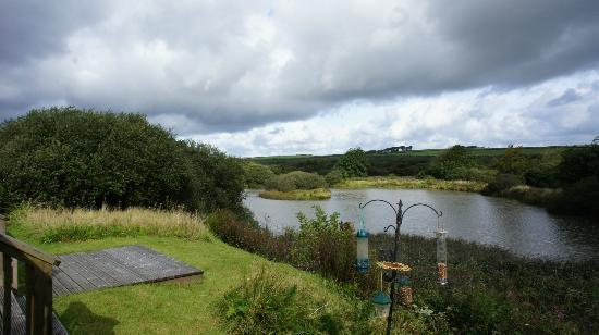 Hartland Forest Golf Parc: Rear views from Waterside Lodge