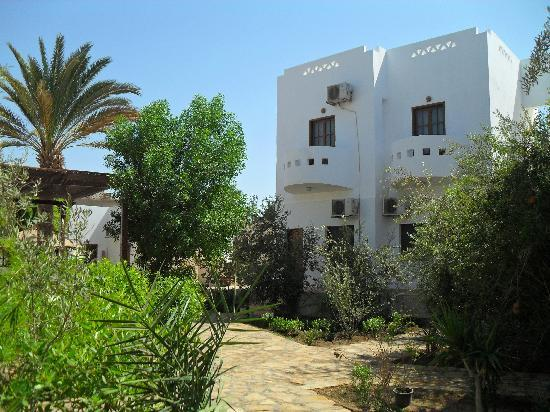 Photo of Alaska Camp & Hotel Dahab