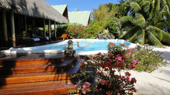 EcoLodge&amp;SPA Moorea Maharepa: Piscine