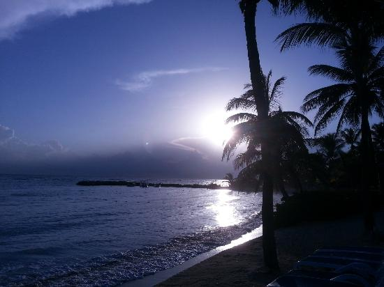 Hilton Rose Hall Resort & Spa: Good morning!
