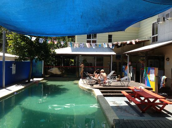 Parrotfish Lodge Backpackers Resort: pool, BBQ and hang out area