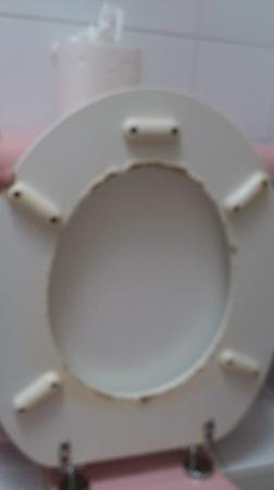 Bell House Hotel: damaged toilet seat..