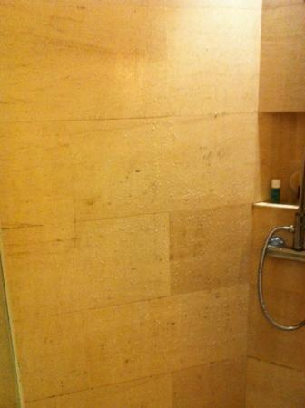 Amara Sanctuary Resort Sentosa: As stated before, mold even on wall tiles.....