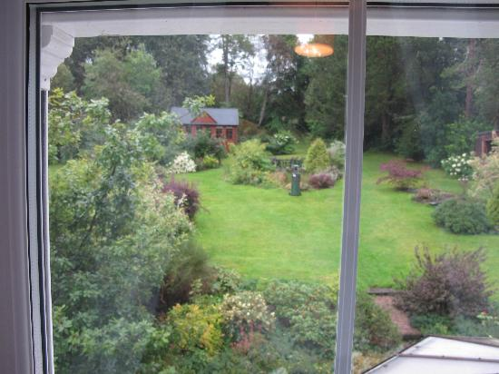 Strathyre, UK: View from Forest room