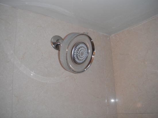 Sheraton New Orleans Hotel: Shower head