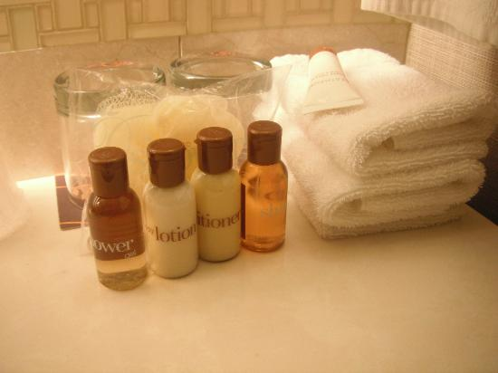 Sheraton New Orleans Hotel: Amenities