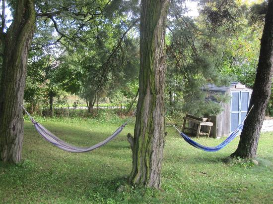 Givingtree Bed and Breakfast: Hammocks