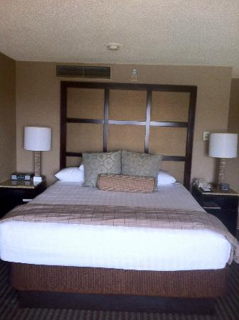 Hyatt Regency Greenville: King Room