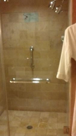 Westin St. Louis: Shower