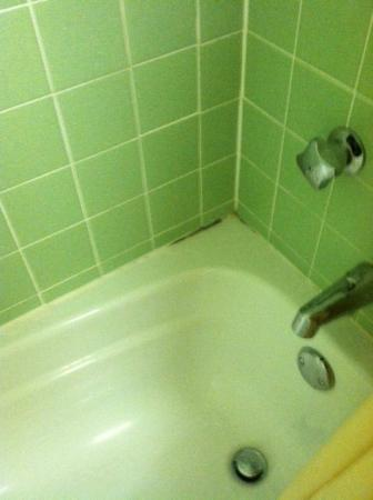 Inn at Reading: Mold in bathtub