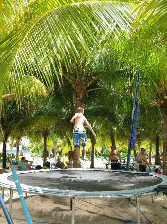 Paradise Beach: The trampoline