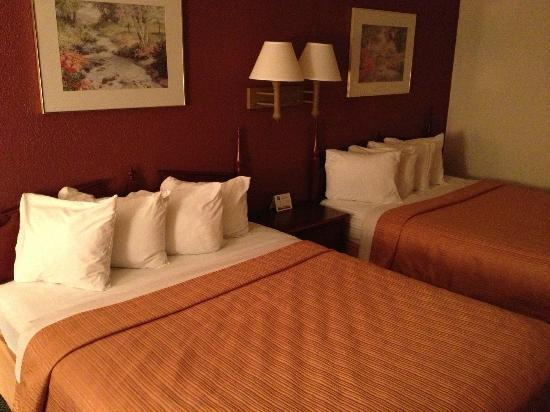 Quality Inn: bed area