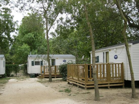 Camping Les Pins: Siesta lodge at Les Pins
