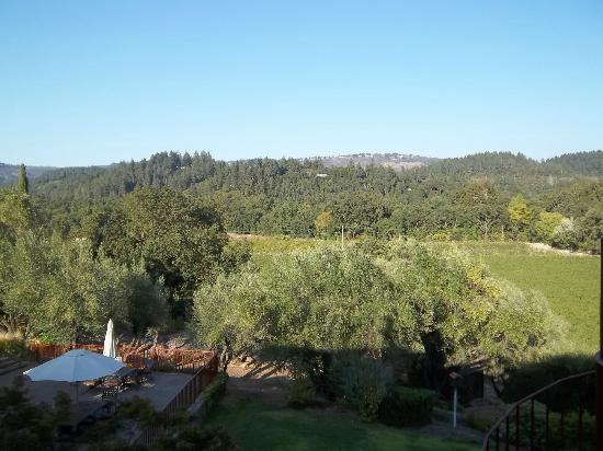 The Wine Country Inn: Balcony view from our room #11.