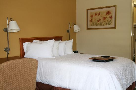 Hampton Inn Washington Rd: Guest Room with 1 Double Bed