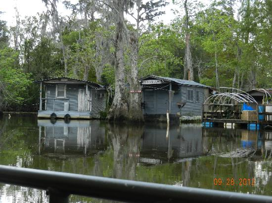 Bayou camp picture of honey island swamp tours slidell for Louisiana fish bar
