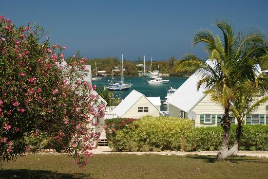 Green Turtle Cay: View of White Sound from the Bluff House Grounds