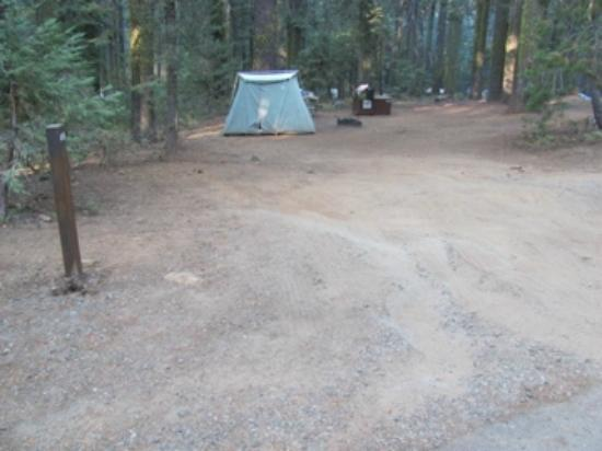 Crane Flat Campground: #418 From the road