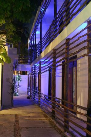 Hotel Latino: Night time patio area