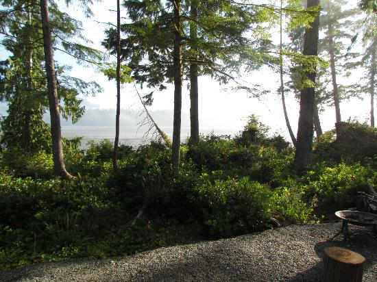 Black Bear Guesthouse: Inlet view from covered deck