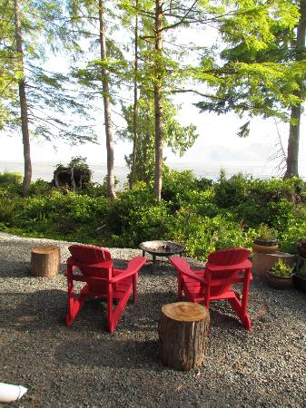 Black Bear Guesthouse: We enjoyed a campfire here on our final night, my kids loved it and the stars were amazing