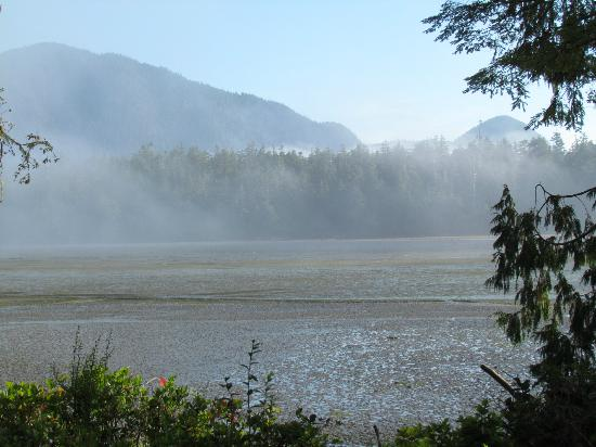 Black Bear Guesthouse: View of the inlet in the morning