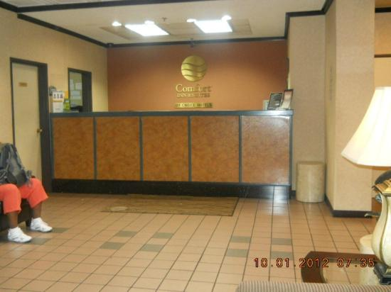 Comfort Inn & Suites LAX Airport: Front desk, lighted photo