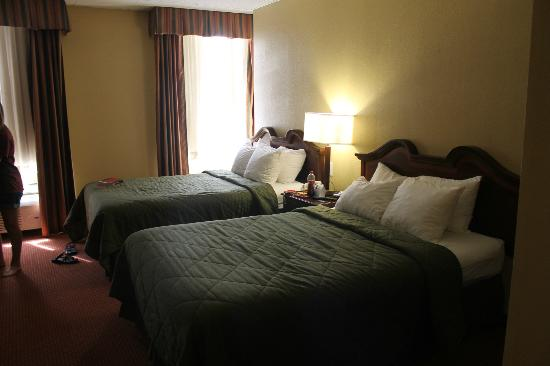 Comfort Inn & Suites Downtown: Double Room-comfortable and well appointed