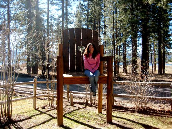 Fawnskin, CA: Large chair