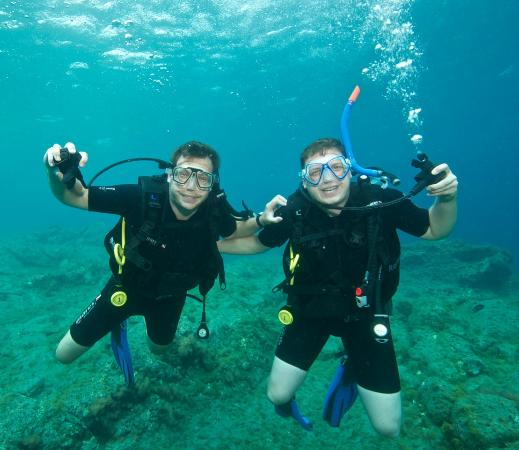 Dive at the el cabron national marine reserve picture of puerto de mogan mogan tripadvisor - Pension eva puerto de mogan ...