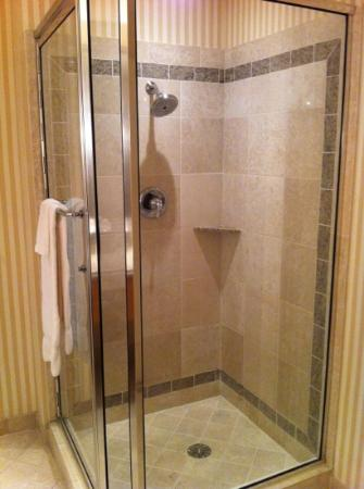 Eldorado Resort Casino: shower