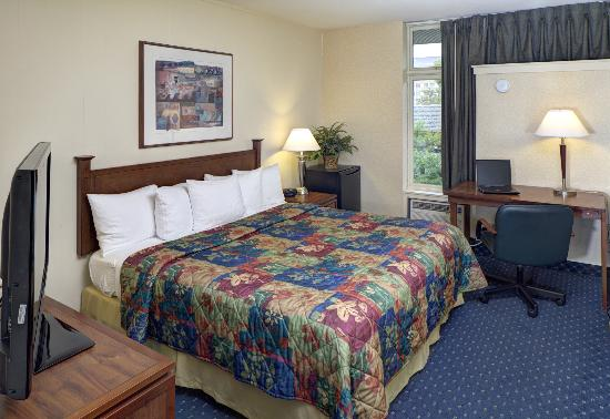 University Inn: Single room