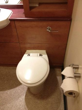 Premier Inn Taunton Central - North: WC