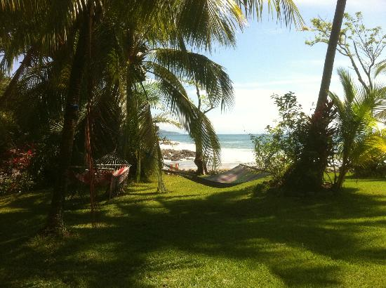 Hotel Amor de Mar: Front Lawn with view of the ocean and a few hammocks