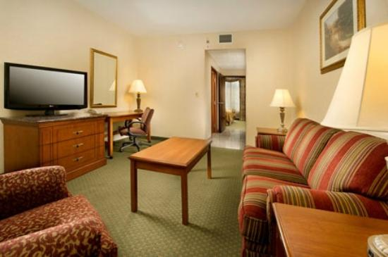 Drury Inn & Suites Columbus South: Suite