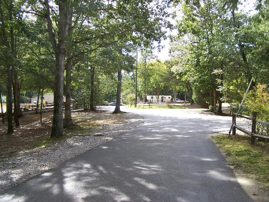 Williamsburg KOA Campground: Main road