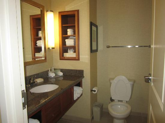 Holiday Inn Express Denver Airport: bathroom