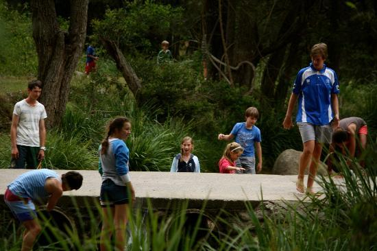 Mt Barney Lodge Country Retreat: Some of our kids by the creek