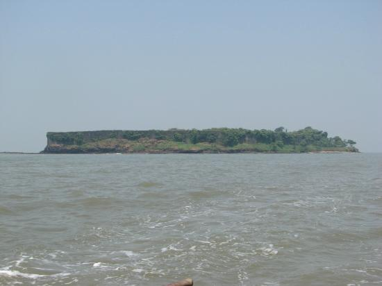 Fish market picture of harnai beach murud harnai for Places that sell fish near me