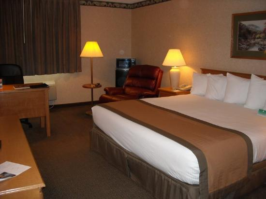 BEST WESTERN PLUS Grand Seasons Hotel: King Room