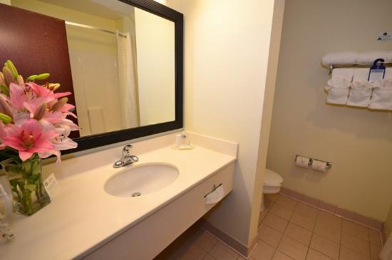 BEST WESTERN Concord Inn &amp; Suites: Bathroom