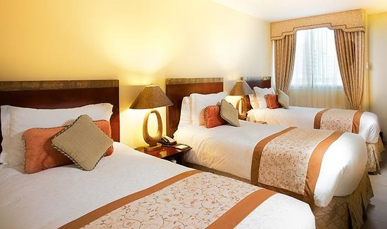 Toscana Inn Hotel : Triple Bed Room 